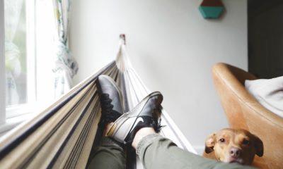 5 Smart Actionable Tips to Overcome Laziness